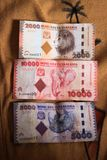 Beautiful different Tanzanian banknotes with animals royalty free stock images