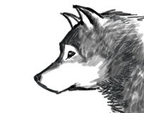 Wolf brush paint illustration black and white Stock Photos