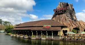 RainForest Cafe, Disney Springs, Orlando, Florida. Beautiful Disney Springs in Orlando, Florida royalty free stock image