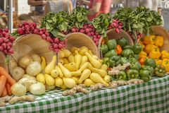 Beautiful display of radishes, yellow squash, onions, ginger and a verity of colored peppers royalty free stock photo