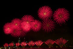Fireworks. Beautiful display of Red fireworks on Australia day Stock Image