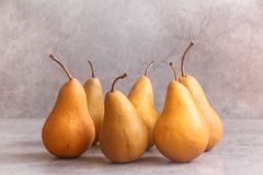 A beautiful display of ripe Bosc or `The Beurré Bosc` pears with long tapering neck and russeted skin. stock photos