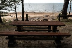 Beautiful distant picnic and camping spot near a Baltic sea in a pine forest with a boulder beach in the background - stock photo