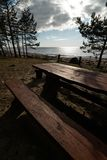 Beautiful distant picnic and camping spot near a Baltic sea in a pine forest with a boulder beach in the background - stock photos