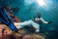Beautiful diver in fish and corals reef background Royalty Free Stock Photos