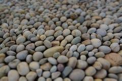 Beautiful diverse riverside pebbles Stock Images