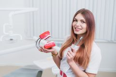Beautiful doctor orthodontist shows you how to care for your teeth. Doctor orthodontist shows you how to care for your teeth Royalty Free Stock Photography
