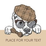 A beautiful dog in a cap, glasses and a tie. Vector illustration for a postcard or a poster, print for clothes. Purebred puppy. Alabai or the Shepherd Royalty Free Stock Images