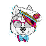 A beautiful dog in captain`s cap, glasses and tie. Vector illustration for a postcard or poster, print on clothes. Purebred puppy. Royalty Free Stock Photos
