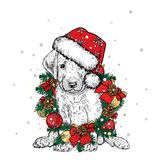 Beautiful dog in Christmas wreath. Lovely thoroughbred puppy. New Year`s and Christmas. Vector illustration. Beautiful dog in Christmas wreath. Lovely Royalty Free Stock Photography