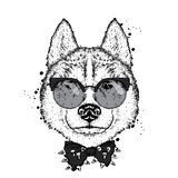 A beautiful dog with glasses and a tie. Vector illustration for a postcard or poster, print on clothes. Purebred puppy. Royalty Free Stock Image