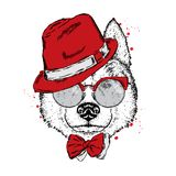A beautiful dog in a hat, glasses and a tie. Vector illustration for a postcard or poster, print on clothes. Purebred puppy. Royalty Free Stock Images