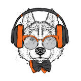 A beautiful dog with headphones, glasses and a tie. Vector illustration for a postcard or poster, print on clothes. Purebred puppy.  Royalty Free Stock Photo