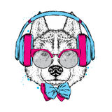 A beautiful dog with headphones, glasses and a tie. Vector illustration for a postcard or poster, print on clothes. Purebred puppy Royalty Free Stock Images