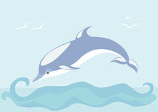 Beautiful dolphin Stock Images