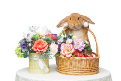 Beautiful domestic rabbit. Adorable red domestic lop-eared rabbit holding basket with flowers isolated over white background. Copy space Stock Photo