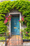 Beautiful door with climbing ivy Royalty Free Stock Photo