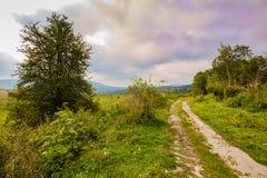 Beautiful dramatic nature Stock Photos