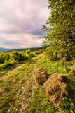 Beautiful dramatic nature Royalty Free Stock Image