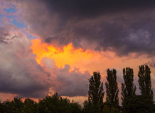 Beautiful dramatic sunset with trees and storm Royalty Free Stock Photo
