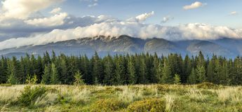 Beautiful dramatic white clouds over mountains. Forest hills in. Carpathian mountains. Ukraine Stock Photography