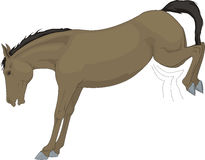 Beautiful drawing, horse of farm Royalty Free Stock Photo