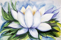 Beautiful drawing lotus watercolor paint Royalty Free Stock Photography
