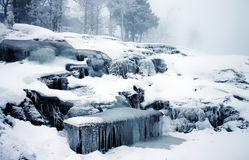 Beautiful and dream like winter picture Royalty Free Stock Photo