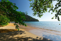 Beautiful dream paradise beach, Madagascar. Beautiful dream paradise beach in Nosy Mangabe national park, Madagascar. Blue sky and clear sea, Wilderness pure stock images