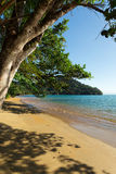 Beautiful dream paradise beach, Madagascar royalty free stock images