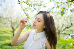 Beautiful dreamy girl near blossoming branch Stock Photos