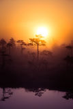 A beautiful, dreamy morning scenery of sun rising above a misty marsh. Colorful, artistic look. Stock Photos