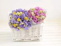 Beautiful dried flowers Stock Image