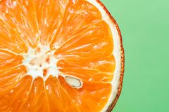 Beautiful dried orange with bone close-up on a light green background royalty free stock photography