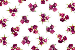 Beautiful dried pink roses like as background Royalty Free Stock Photo