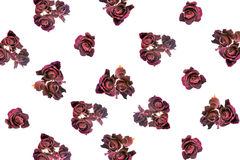 Beautiful dried red dark roses like as background Royalty Free Stock Image