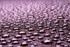 Beautiful drops of water Royalty Free Stock Image