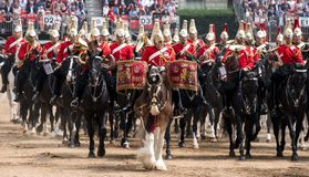 Beautiful drum horse with Household Cavalry behind, taking part in the Trooping the Colour ceremony, London UK. Drum horse with Household Cavalry behind, taking royalty free stock photo