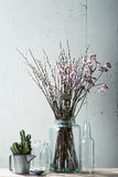 Beautiful dry flowers with vintage stuff Royalty Free Stock Image