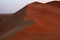 Beautiful Dune Portrait. Photo With The Desert Behind Royalty Free Stock Photo