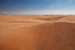 Beautiful dunes in Omani desert, with dark blue sky as backgroun Stock Photos