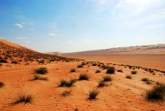 Beautiful dunes in Omani desert Royalty Free Stock Images