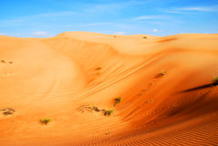 Beautiful dunes in Omani desert Royalty Free Stock Photography