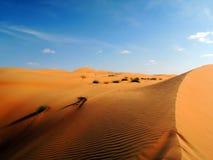 Beautiful dunes in Omani desert Royalty Free Stock Photo