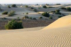 Beautiful dunes of Thar desert during sunrise,Rajasthan,India royalty free stock photos