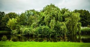 Beautiful Dutch city park elements close-up Royalty Free Stock Photo