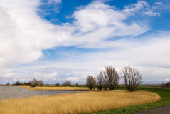 Beautiful dutch landscape Royalty Free Stock Photos