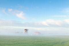 Beautiful Dutch windmill in morning mist Stock Photos