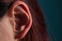beautiful ear of an adult woman royalty free stock photo