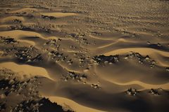 Aerial View of Sand Dunes. Beautiful early morning light shines on the sand dunes in the Namib desert. Aerial view from a helicopter, Namibia stock image
